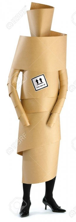 7924442-a-woman-girl-wrapped-up-in-brown-paper.thumb.jpg.261c07c0c28901b074be41fea4938760.jpg
